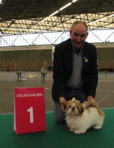 Zamira Ho van Buruf, jongste puppyklas teef: 1VB
